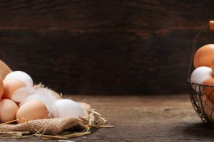Losing Weight through Eating only Eggs as a whole Food